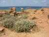 Apollonia_Das archäologische Gelände