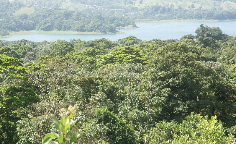 Costa Rica_Der See Arenal