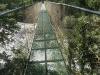 Costa Rica_Im Reservat Tirimbina_Hängebrücke über den Rio Sarapiqui