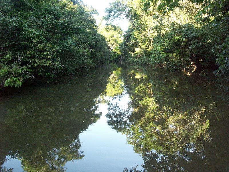 Costa Rica_Nationalpark Tortuguero