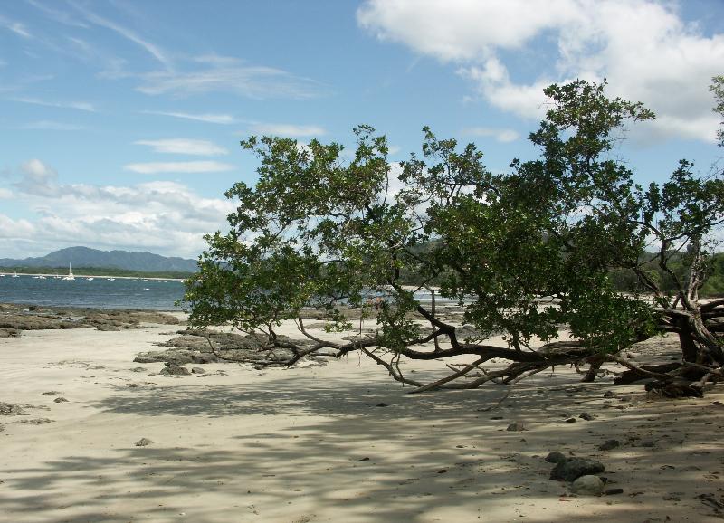 Costa Rica_Am Pazifischen Ozean_Strand von Tamarindo