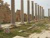 Leptis Magna_Porticus post scaenam