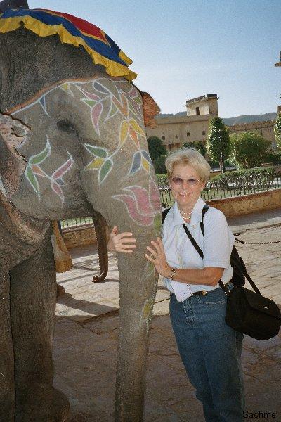 Jaipur - Fort Amber - Elefanten-Taxi