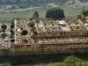 Jaipur - Fort Amber - Mogulgarten