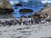 Die Bucht von Monterey
