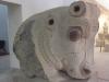 Susa - Museum: Stierkapitell