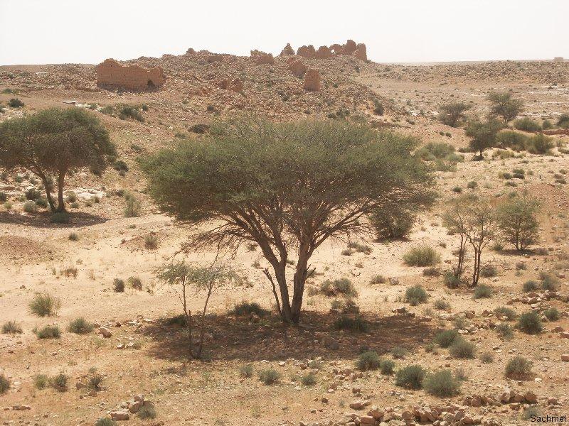 Wadi Ghirza