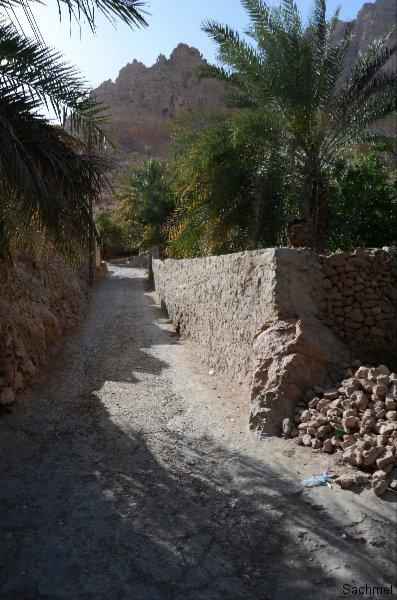Oman_Oase Tiwi