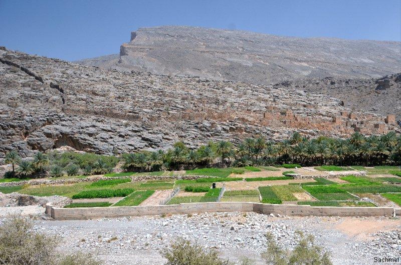 Oman_Wadi Ghul
